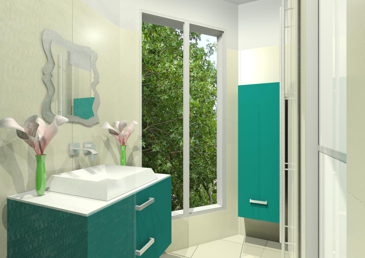 Rénovation complète de Salle de bain et création de couloir dressing, mobilier Birex, Vasque à poser Alape, robinetterie Graff
